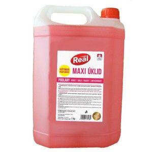 Univerzální čistič REAL maxi antistatic 5 kg