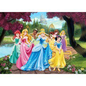 Papírová fototapeta  s motivem Princezny, 160×115 cm